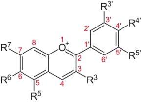 anthocyanidol
