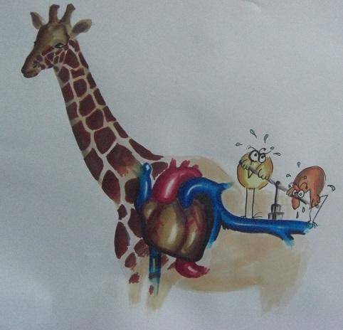 girafe_3